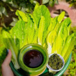 درار (نمک سبز)