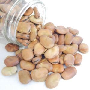 دسنه باقالا (باقالا کاشانی خشک)